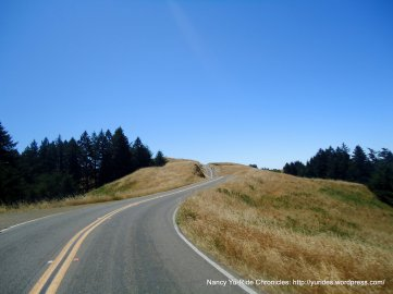 rolling along the ridge