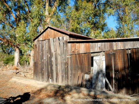 old barn atop of McEwen Rd