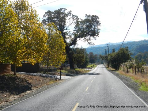 start of Morgan Territory Rd