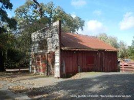 old barn-Nicasio