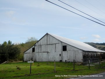 Nicasio Valley Cheese Company