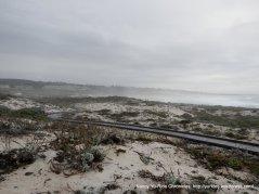 boardwalk through the dunes