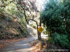 approaching dead end