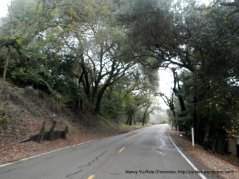 lower Franklin Canyon Rd