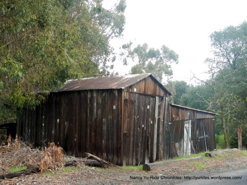 old barn at the top of McEwen