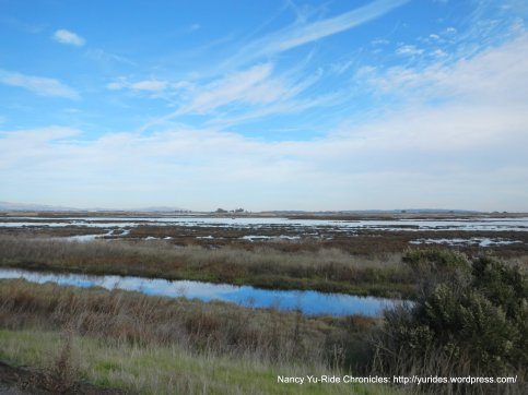 marshes & sloughs-Grizzly Bay