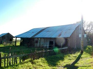old barn-Hwy 1 north