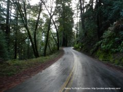 climb up Bolinas Fairfax to Ridgecrest