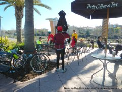 lunch stop @ Peet's