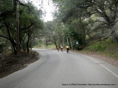 climb up Kilkare Rd