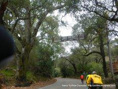 to Kilkare woods