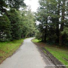 path/trail along park