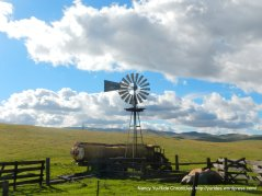 open grasslands with windmills in the background