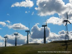 Altamont wind farms