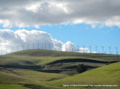 windmills lining the hillsdies