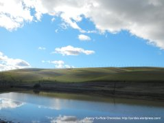 view from Altamont Pass Rd