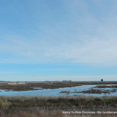 Grizzly Wildlife Area marshlands