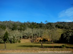 surrounding landscape on Hwy 121