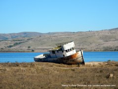 old boat on Tomales Bay