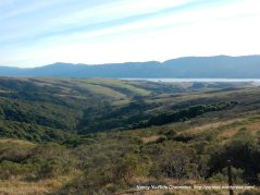 view from the ridge-Tomales Bay