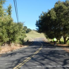 start of climb up steep Pig Farm Hill
