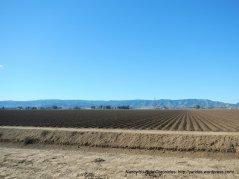 vast agricultural fileds off Halley Rd