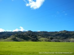 open grassy fields