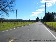 heading towards Cherry Glen