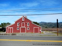 striking red barn-Geyserville Ave