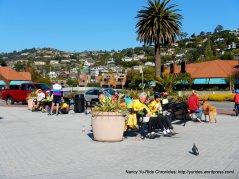 Lunch stop-Shoreline Park Tiburon