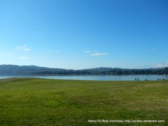 view of McKegney Field from Tiburon Linear Park path