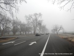 Valley Ave-Pleasanton
