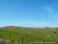Altamont Pass windmills
