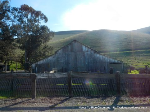 old barn on Manning Rd