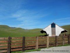 giant birdhouse on Highland Rd