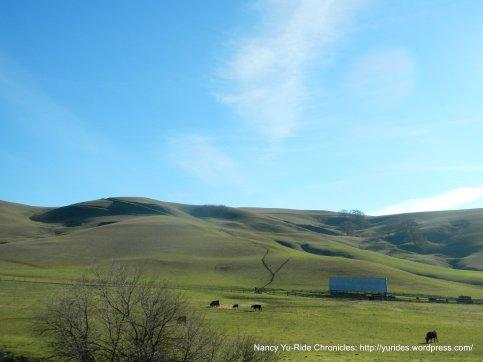 country scene-farm house & ranch
