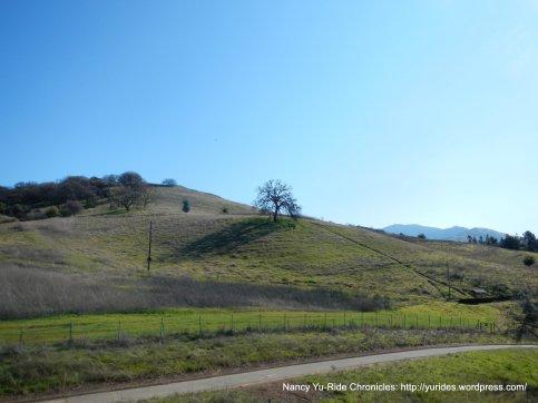 Lime Ridge Open Space