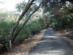single lane narrow road