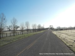 Neal Spring Rd-morning frost