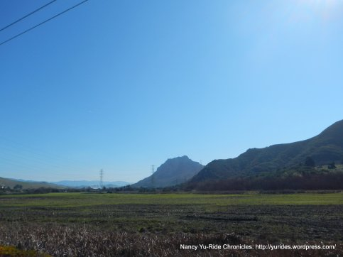 view of Morro bay State Park