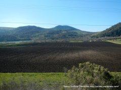 rich fertile farmlands
