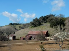 old barn and ranch on CA 46