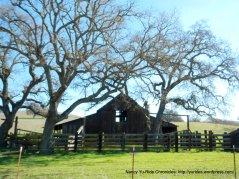 old barn on Cripple Creek Rd
