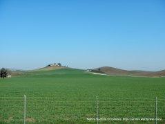 rolling green grasslands