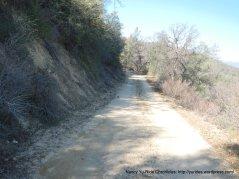 narrow sandy road