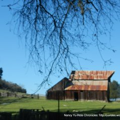 historic Adelaida Ranch