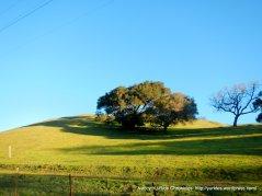 gentle slopes