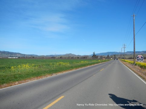 flat road on Abernathy