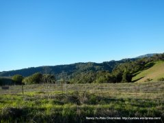 surrounding hills around Briones