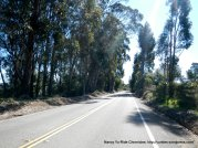 level section of Redwood Rd